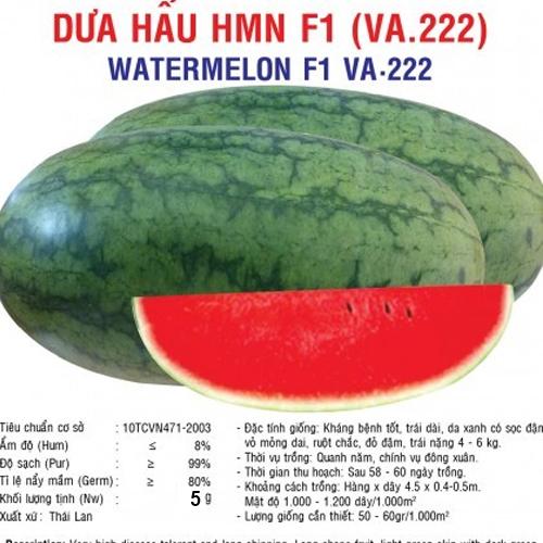 dua hau HMN F1 5gr