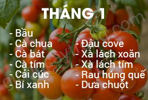 thang-1