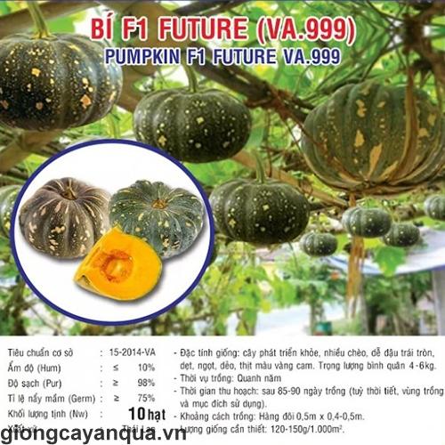 thumbnail_2_5d8d6c941e82c74961c456c073caa3a5